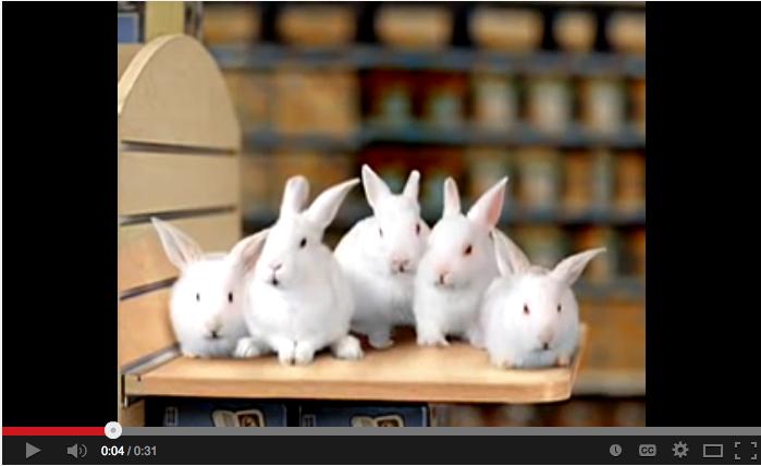 toys r u bunny commercial.jpg