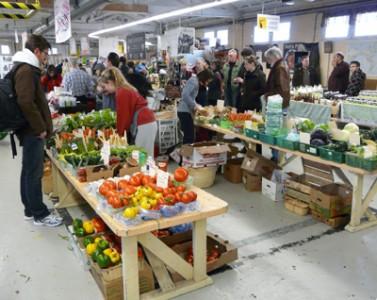 web-market2-377x300