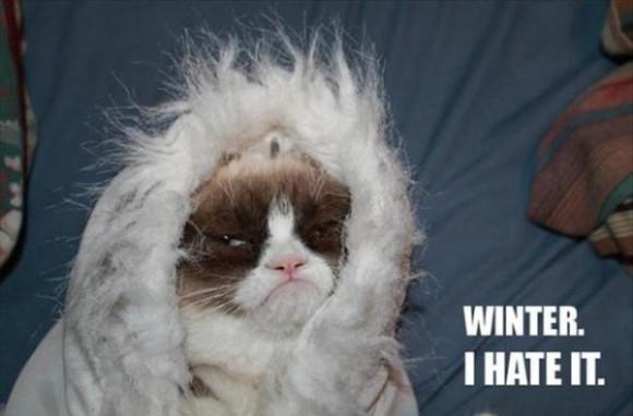 grumpy-cat-meme-winter-i-hate-it-600x396