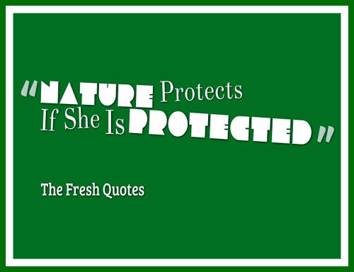 nature-protects-if-she-is-protected-500x384