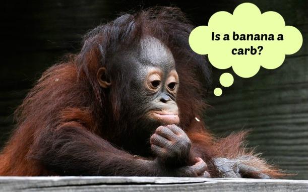 baby-orangutan-2181280k