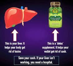 liver2