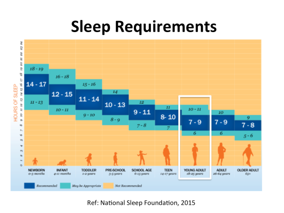 sleep-requirements